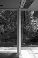Contact sheet image 8 of Mies van der Rohe Addition